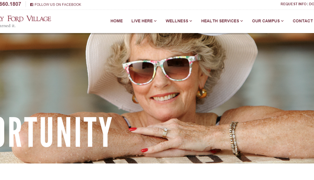 Biznet Digital Plays Key Role in Launch of Henry Ford Village Website