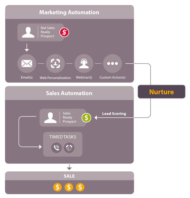 7 Steps to Marketing Automation Success